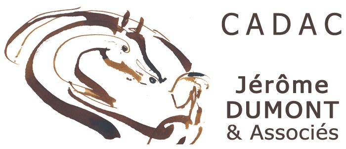 Jérôme Dumont equicoaching moniteur equitation éthologique Lyon Villefranche sur Saone