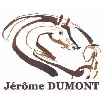 logo Cadac Jérôme Dumont Lyon et Villefranche-sur-Saône